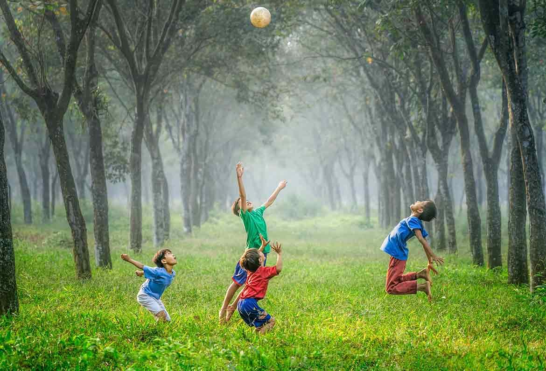 cuatro niños jugando con un balon en un bosque