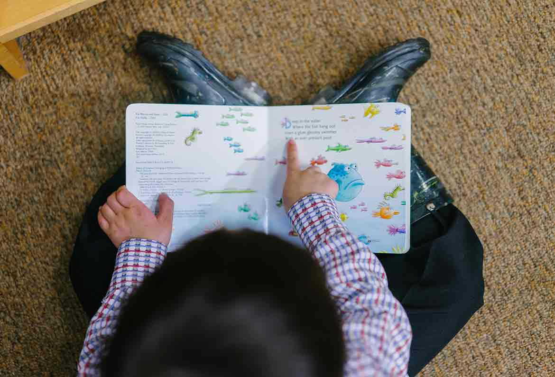 niño leyendo libro con dibujos