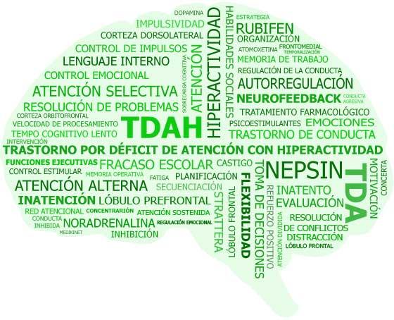 cerebro formado por palabras relacionadas con tdah