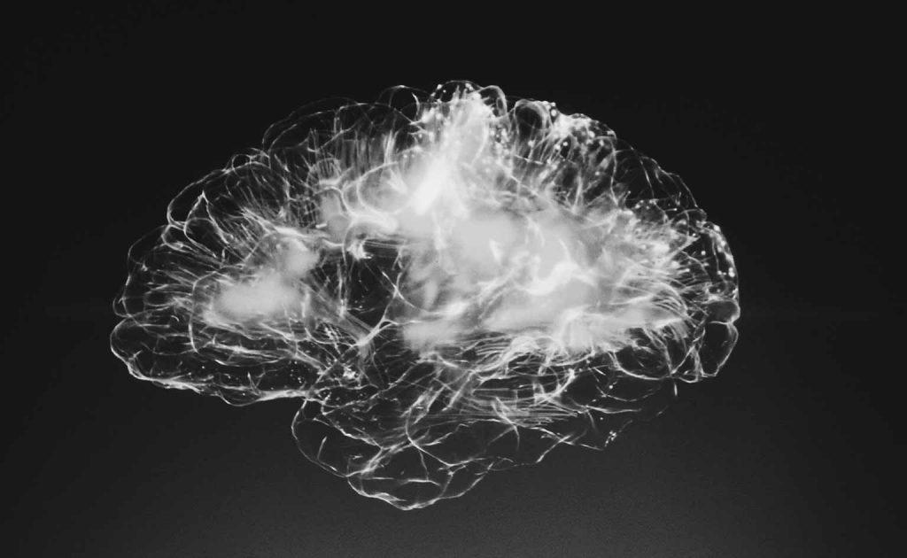 cerebro en blanco y negro